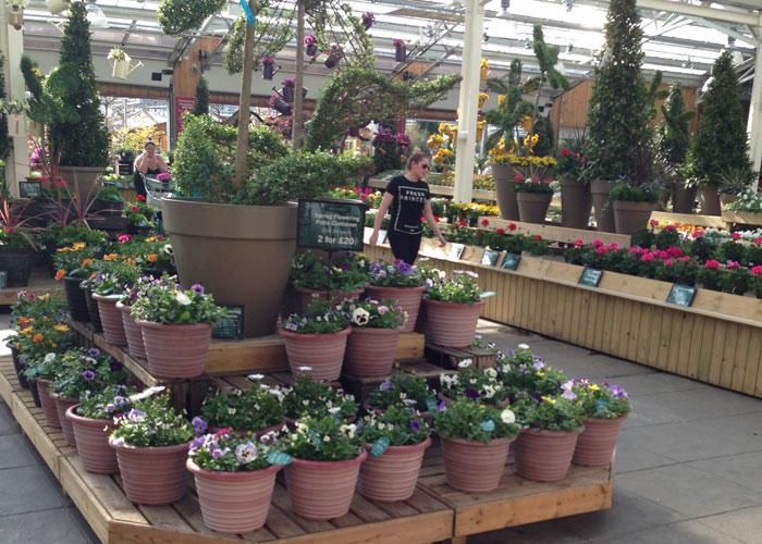 garden centre displays